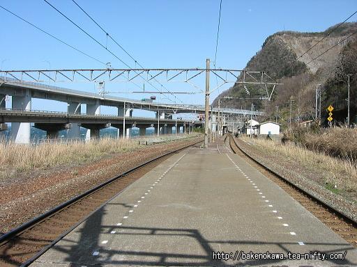 Oyashirazu11
