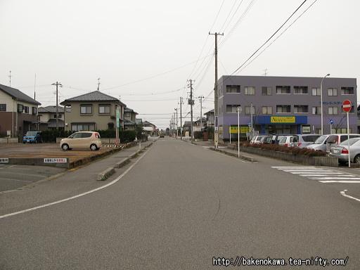 Satsukino02_2