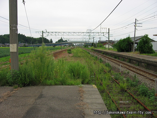 安田駅の旧島式ホームその4