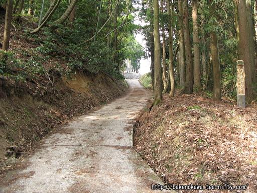Yasuda24