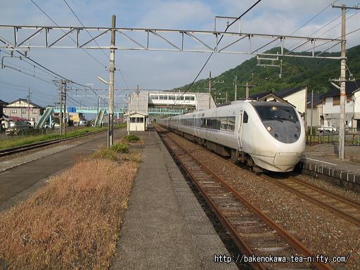 Tanihama31
