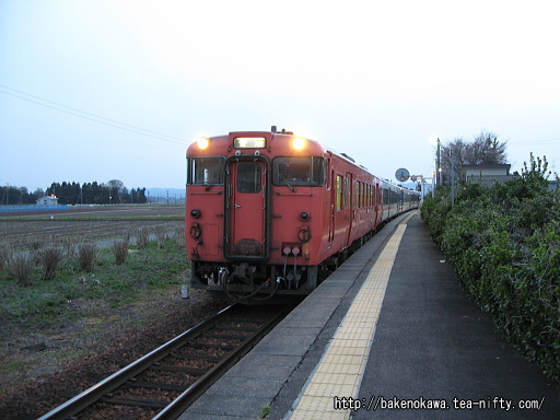 Saruwada01