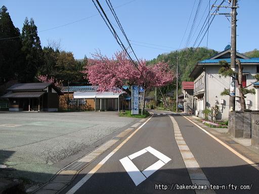 Toyomi16