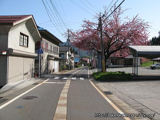 Toyomi17