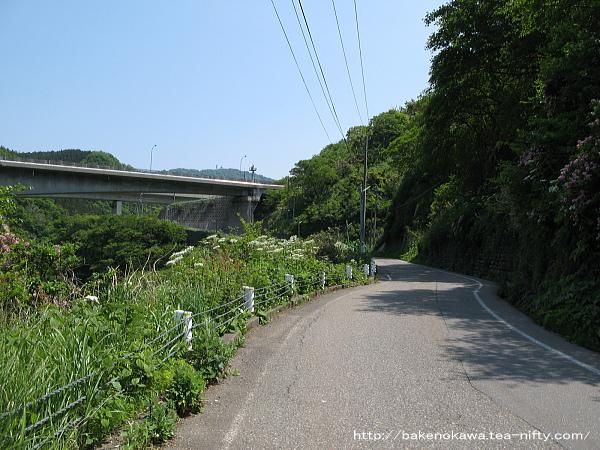 筒石駅から海岸への道