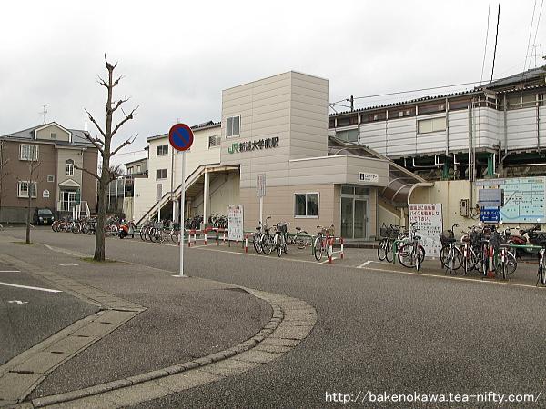 新潟大学前駅舎の様子