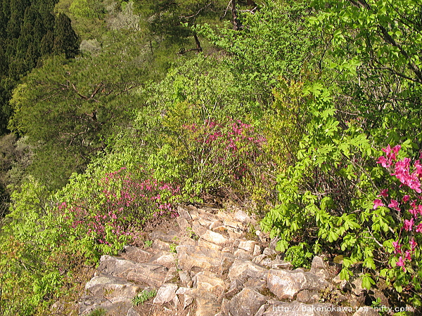岩場の途中から下を見下ろす