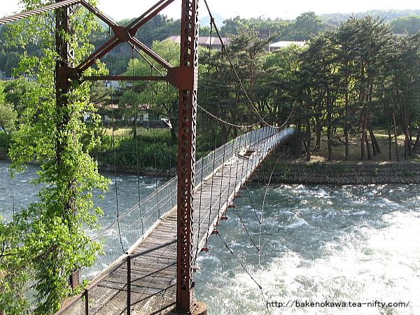 利根川に架かる吊り橋その1