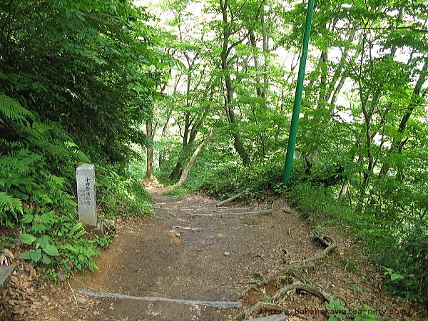 登山道の八合目