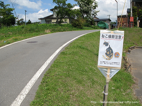 Kurohime0350611