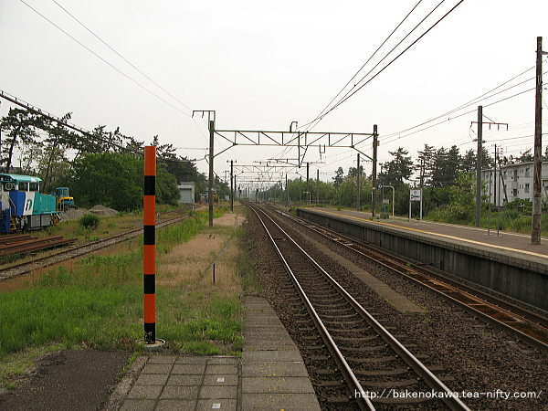 Saigata0050611