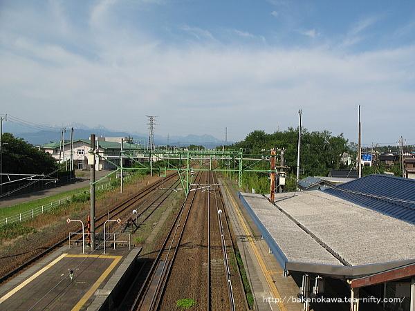Saigata0110612