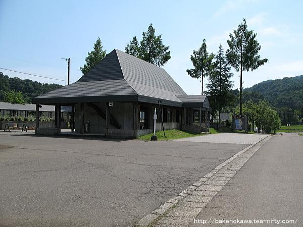 Mushikawaosugi1020612