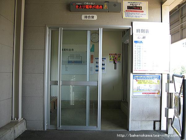 Mushikawaosugi1060612