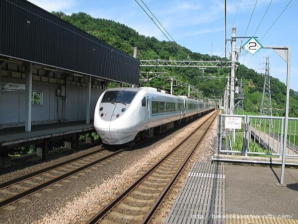 Mushikawaosugi1210612