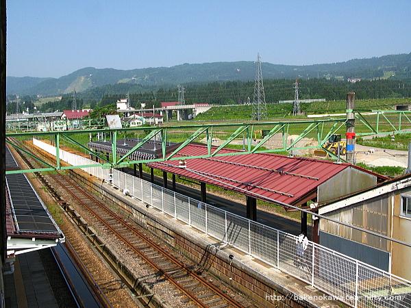 Shiozawa1200514