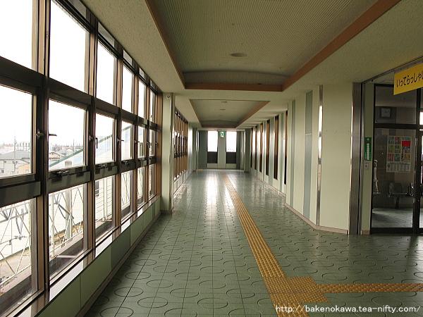 Niizaki1050313