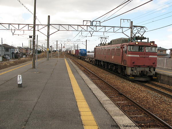 Niizaki1200313