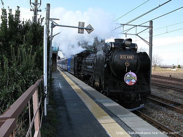 黒山駅を通過するD51形蒸気機関車牽引の「SL村上ひな街道号」