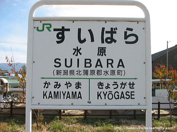 Suibara101