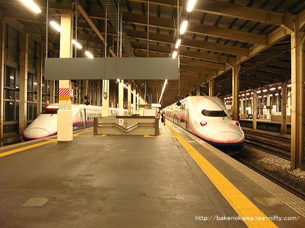 越後湯沢駅に到着したE4系電車「MAXとき」