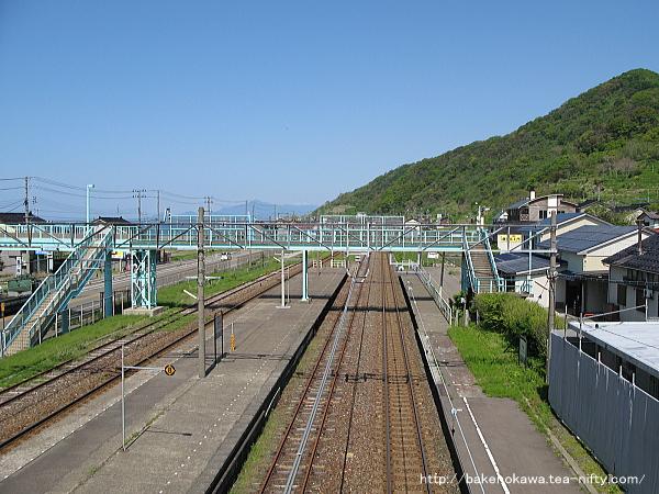 Tanihama1170510