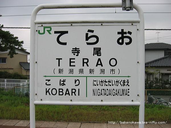 Terao0010905