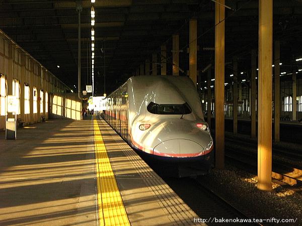 燕三条駅に停車中のE4系新幹線電車「MAXとき」