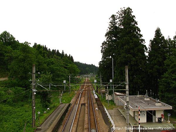 Osawa0090613