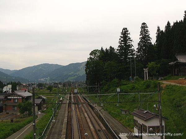 Osawa0100613
