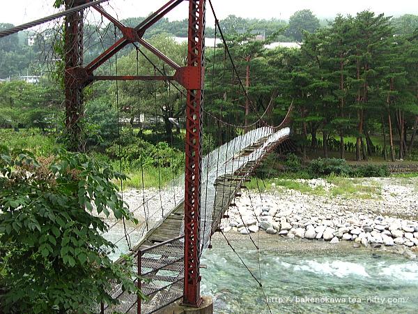 利根川に架かる吊り橋その2