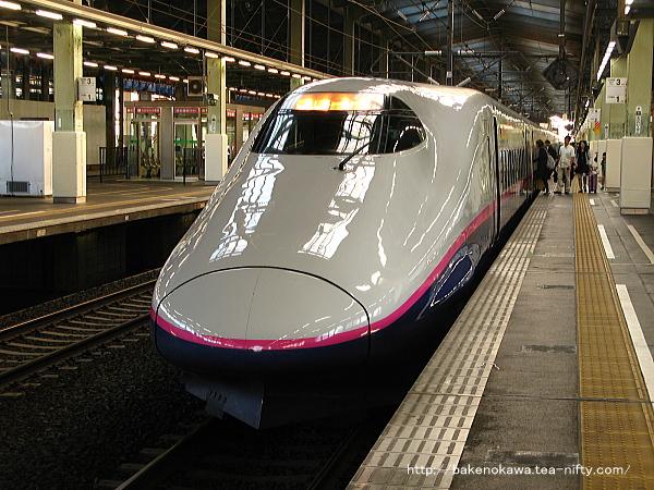 朝のE2系電車「とき」