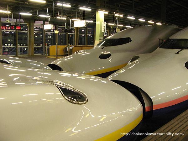 E4系電車重連16両編成が二本揃い踏み