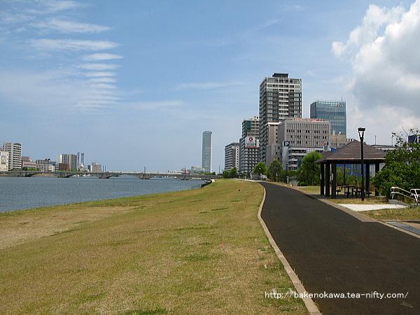 信濃川南側の「やすらぎ堤」から見た萬代橋