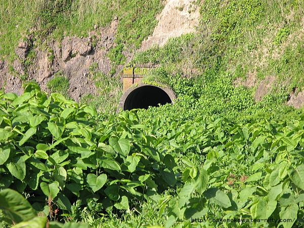 駅近くの信越本線の廃トンネルその2