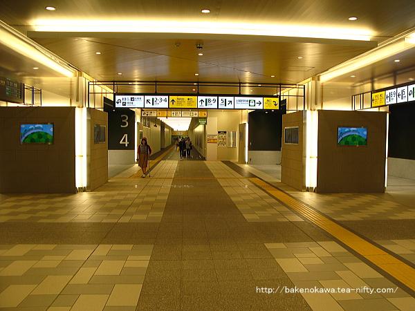 Niigata5190518