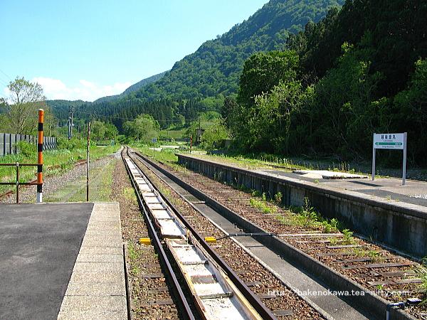 列車交換設備と跨線橋撤去後の越後金丸駅構内その4