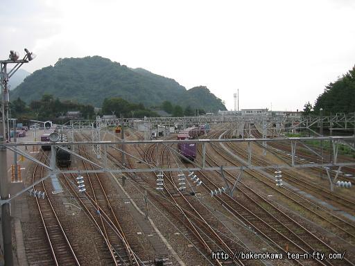 陸橋上から見た青海駅構内