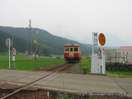 姫川駅付近を走るキハ52形その2