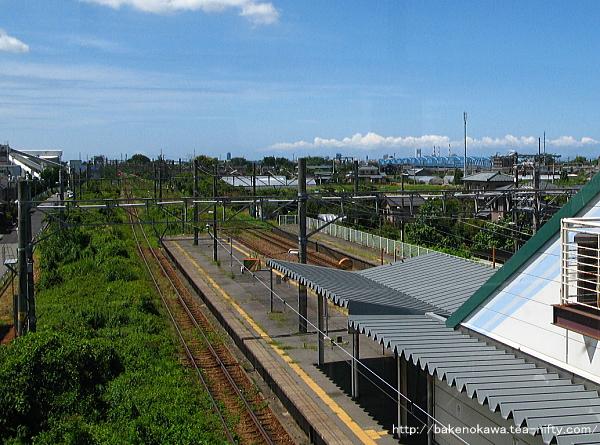 橋上駅舎改札内の通路から見た駅構内