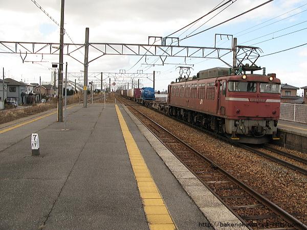 新崎駅に進入するEF81形電気機関車牽引の貨物列車