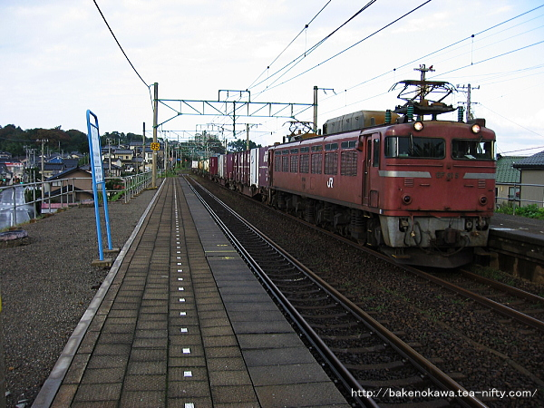 鯨波駅を通過するEF81形電気機関車牽引の貨物列車
