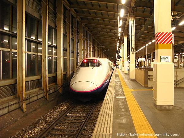 越後湯沢駅に到着したE2系電車「たにがわ」