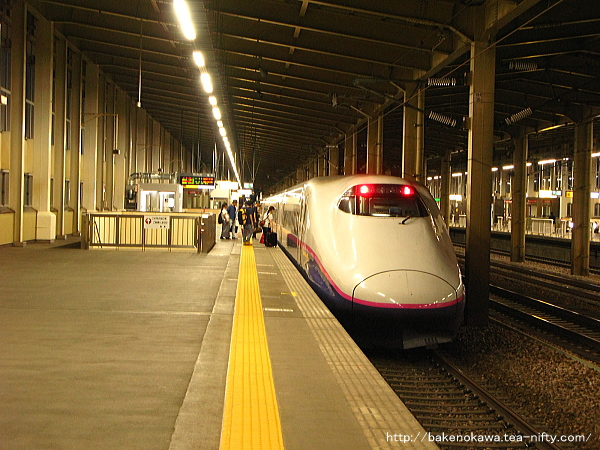 浦佐駅に停車中のE2系電車「とき」