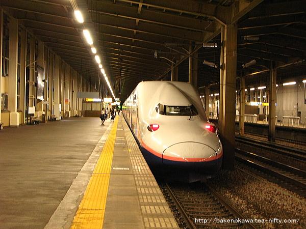 浦佐駅に到着したE4系電車「とき」