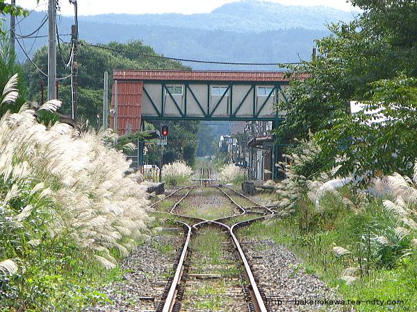 坂町方の踏切から見た小国駅構内