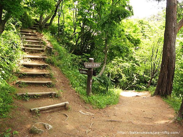 直江屋敷への道