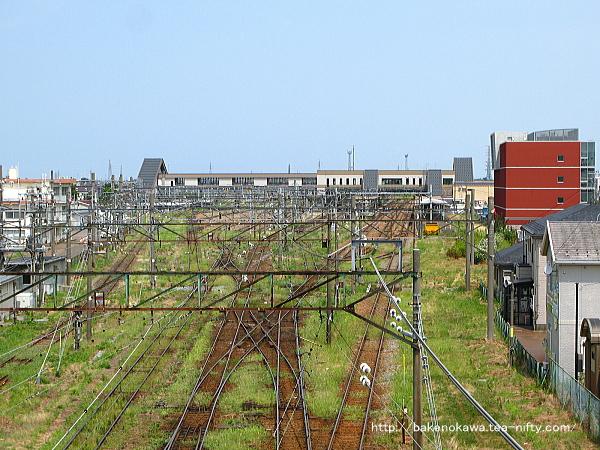 陸橋上から見た新津駅構内