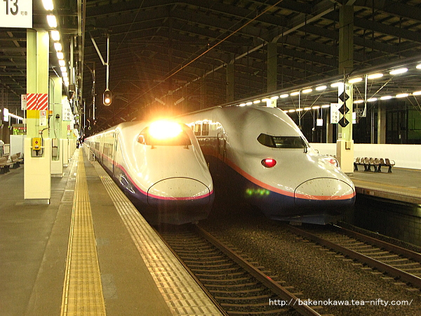 新潟駅構内のE2系電車とE4系電車