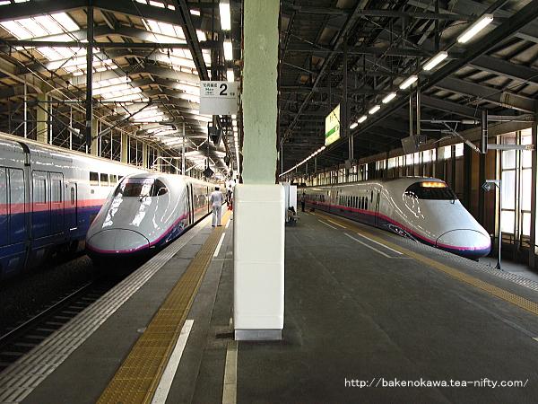 新幹線ホーム全てに電車が入線中